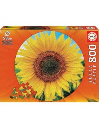 Puzzle 800 pièces - Educa - Tournesol -