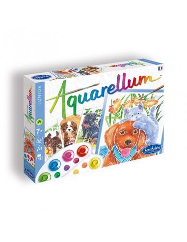 Aquarellum Junior - Chiots
