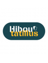 Hiboutatillus